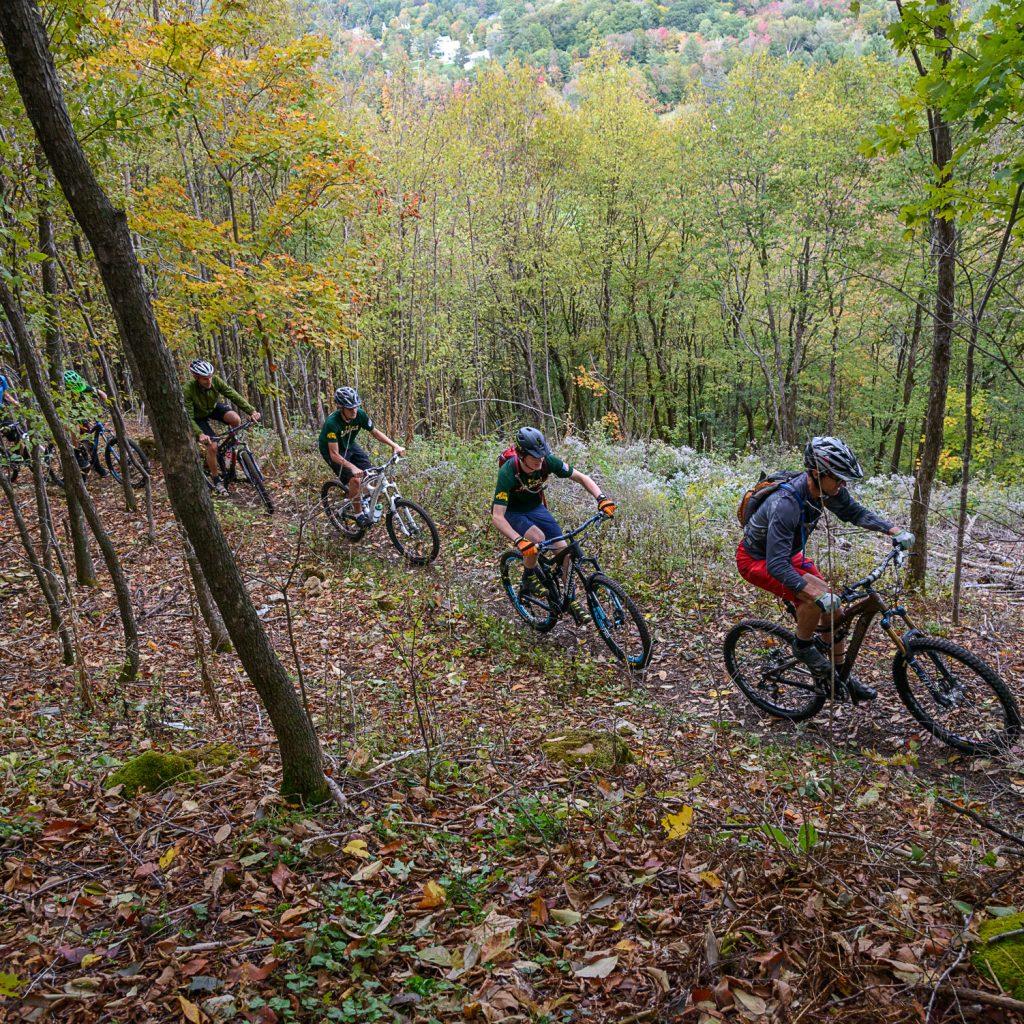 mountain biking group