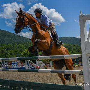 vermont summer festival horse show