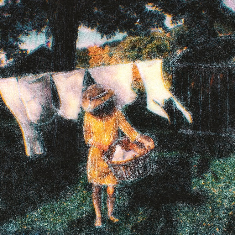 laundry stephen schaub