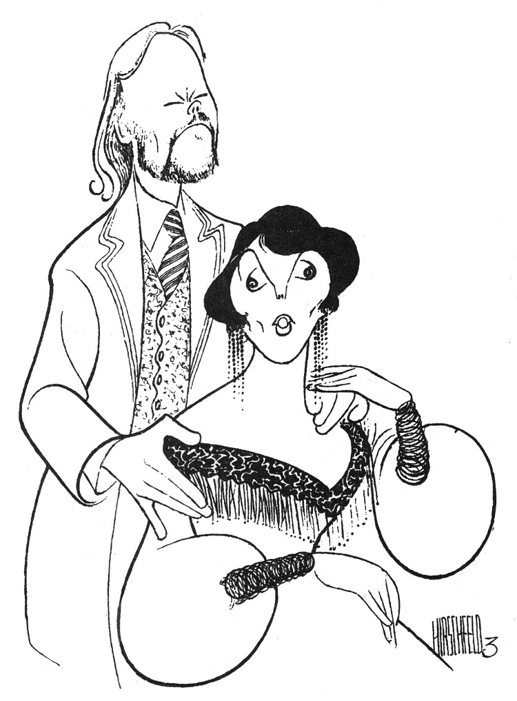 the seagull al hirschfeld