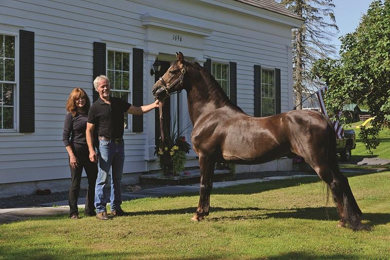 east of equinox farm horse