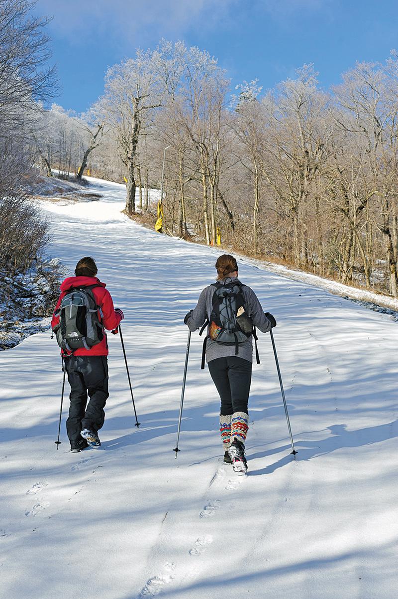 uphill skiers